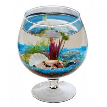 Аквариум ваза бокал