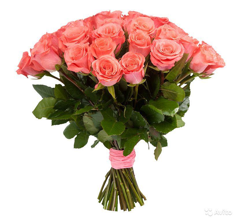 Магазины цветы петрозаводск адреса #3